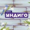 Лига Индиго. Челябинск