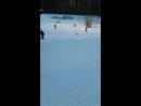 Прогулка в Ржевском лесопарке с Тейзой и Тагирой
