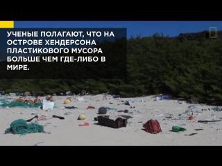 Хендерсон: самый грязный остров мира
