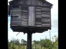 В ульяновске самые криативные дачники в одном из дачных хозяйств недалеко в учхозе Возле сельхоз академии