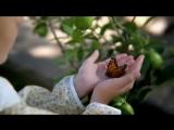 Фильм, снятый с помощью мобильного телефона Android