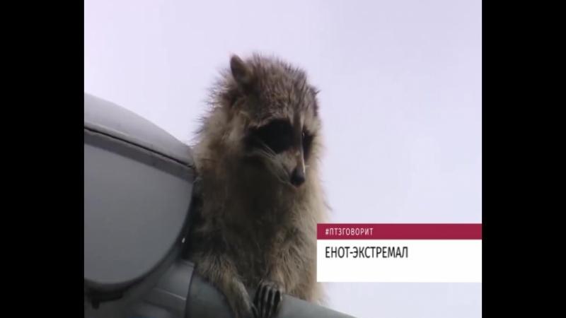 Новости одной строкой 15.03.2018