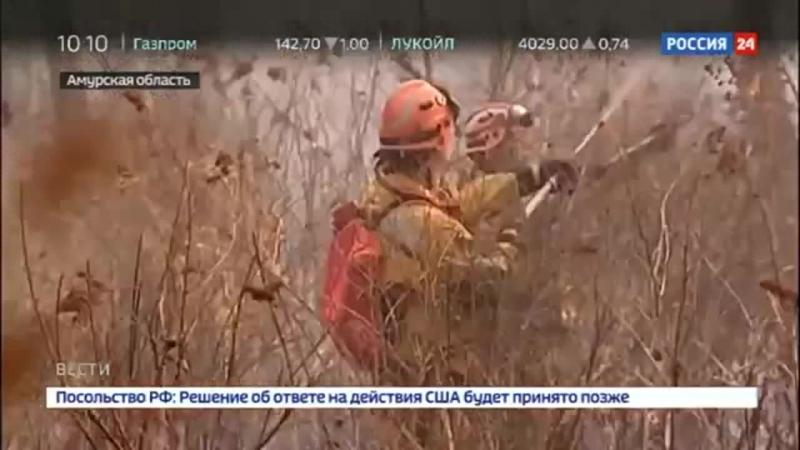 Россия 24 - Благовещенск окружен огнем к борьбе со стихией подключились военные - Россия 24