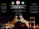 1-й тур чемпионата ВКО 2017-2018 г.г. г.Семей Бойнак 3 года 47 кг. Сырттан 4 года 47 кг.