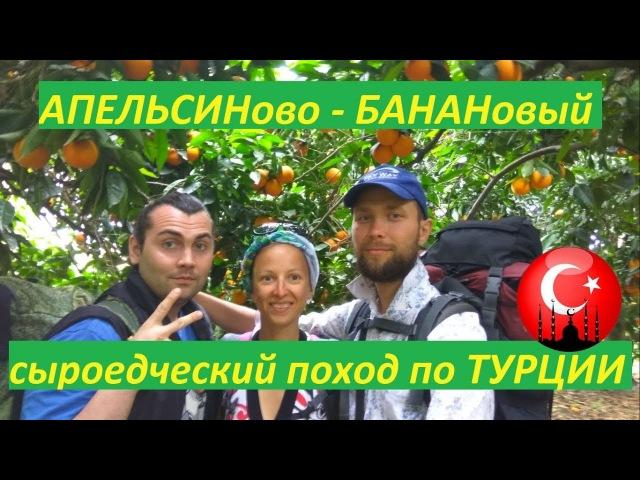 В апельсиновом саду! в сыроедческом походе по Турции