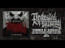 PEDESTAL OF INFAMY SUMMER OF DARKNESS FEAT NO ZODIAC NO ALTARS SINGLE 2018 SW EXCLUSIVE