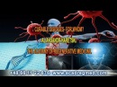 Multiple Sclerosis MS is Cured! Response of the patient to the Academy of Regenerative Medicine.