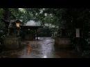 Summer rain in Okusawa, Tokyo.