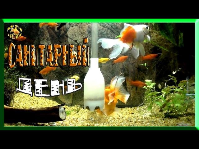 уход за аквариумом(уборка и чистка аквариума)