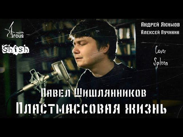 ПЛАСТМАССОВАЯ ЖИЗНЬ. П. Шишлянников (Сплин cover)