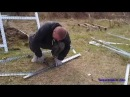 Строительство теплицы-купола на даче Часть 1.
