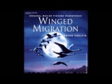 Beating Drums - Winged Migration Soundtrack