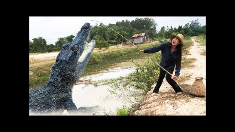 Terrifying Brave Girl Catches UNCAGE CROCODILE While Fishing How to catch CROCODILE