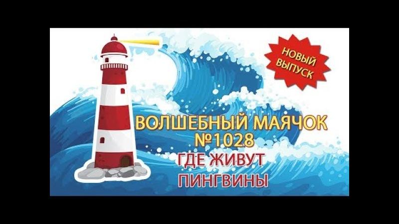 ВОЛШЕБНЫЙ МАЯЧОК Где живут пингвины 1028 выпуск 2018 г.