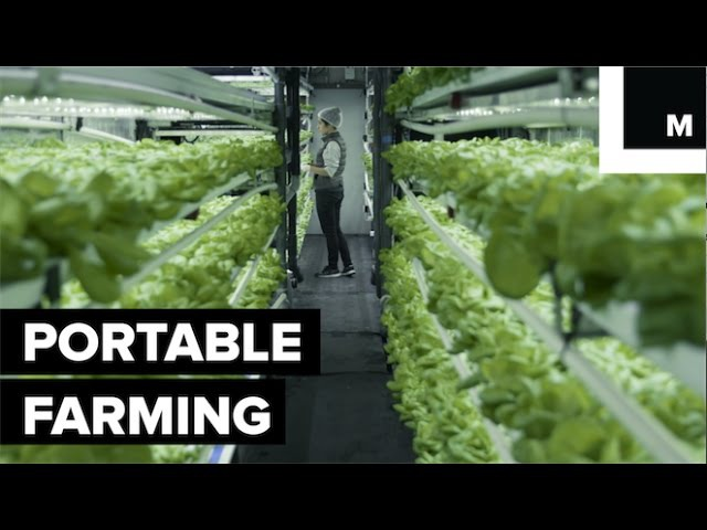 How A Company Fits Five Acres Of Farmland Into Shipping Containers