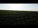 0203 150923 52.996309 35.927253 поле между Хапугинским и Верхним звягинским прудами