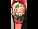 Красная панда в процессе