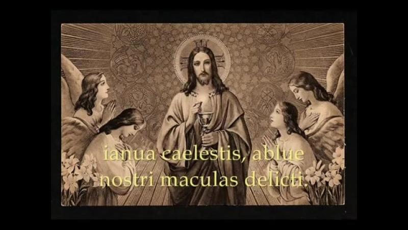 Attende_Domine_-_Catholic_Hymns_2C_Gregorian_Chant.mp4