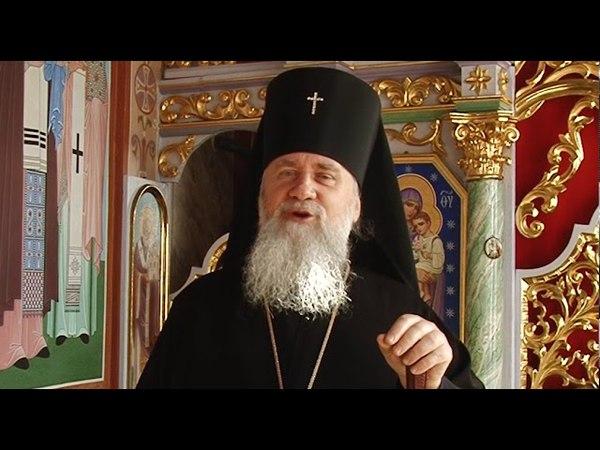 Великоднє ВІТАННЯ Феодора – архієпископа Мукачівського і Ужгородського УПЦ