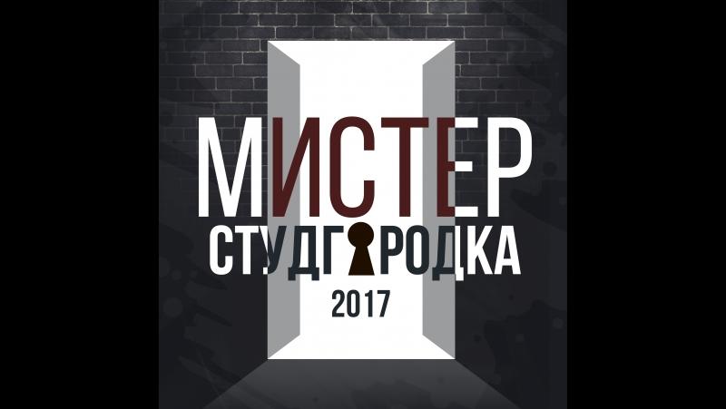 Мистер Студгородка ЮУрГУ 2017 | блиц-опрос