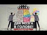 Расщеплённый мозг - это нормально. Андрей Курпатов на QWERTY.