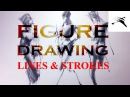 Figure Drawing: Study with Lines and Strokes.
