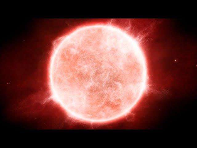 NML Лебедя - самая большая звезда во Вселенной