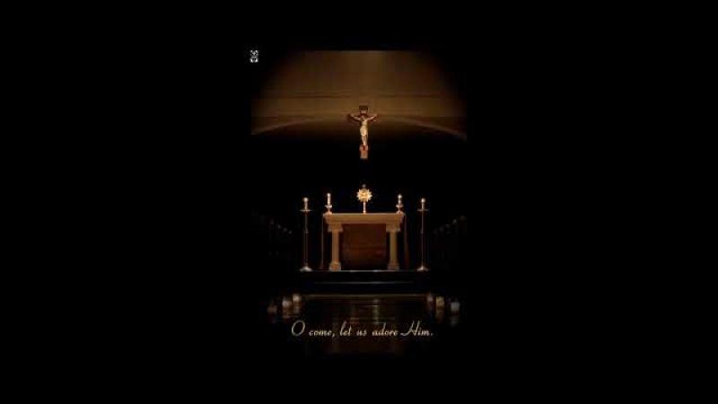 Chlebie Żywy, łamany drzewem Krzyża...