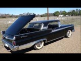 1959 Fairlane Galaxie 500 Skyliner, Elvis, Chihuahua, Cops, and Horses