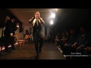 Rocio Molina en la Peña Flamenca El Almibar de Córdoba