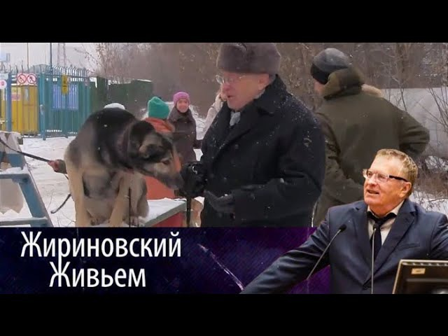 Владимир Жириновский посетил приют для бездомных собак. Жириновский живьем от 16.01.18