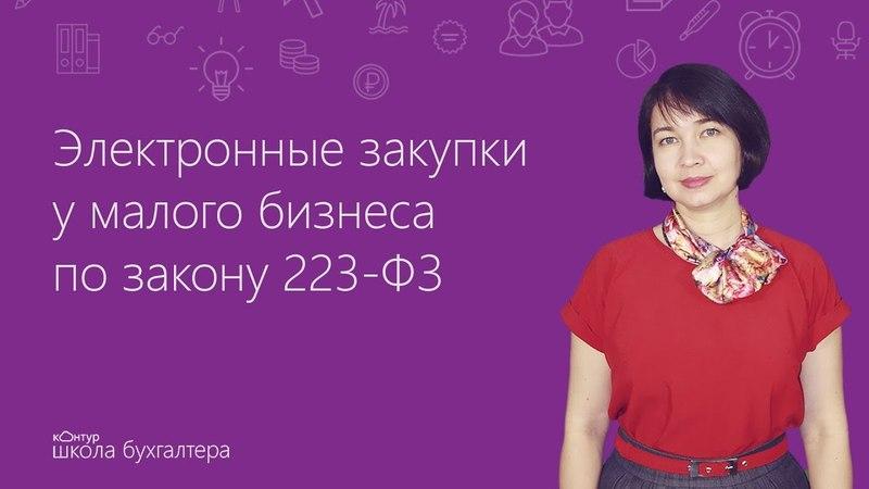 Электронные закупки у малого бизнеса по закону 223-ФЗ
