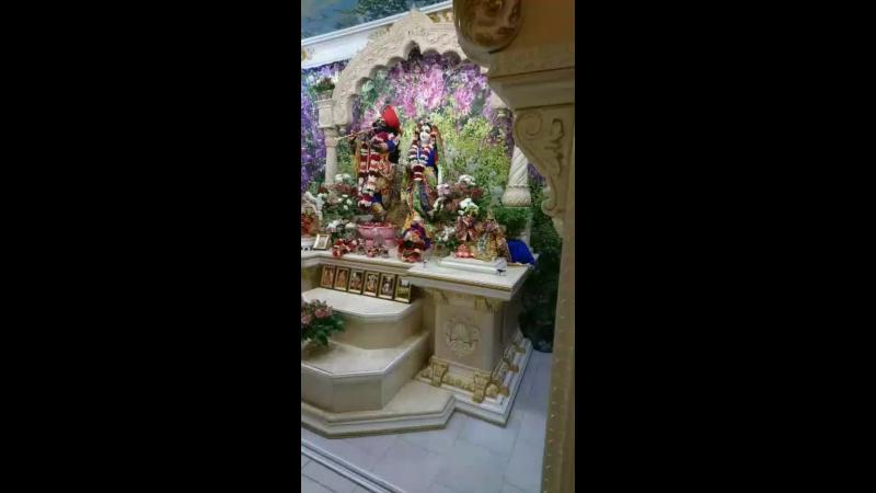 Даршан Шри Шри Радхи Говинды. Совершенная красота!