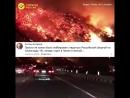 Реакция россиян на лесные пожары в США