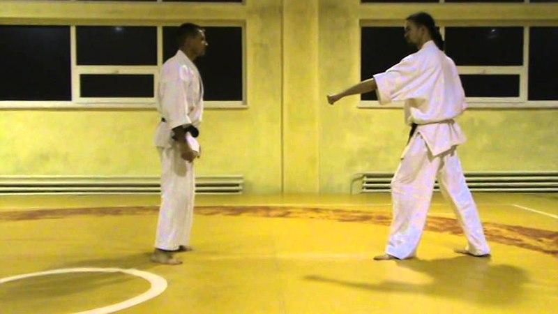 Бушинкан Дзю Дзюцу - ката уходов с линии атаки. (Bushinkan Jiu Jitsu)