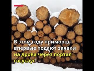 В Приморье выдают дрова по электронной записи