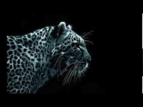 Tim Ismag - Dubstep Planet Anthem (Original mix)