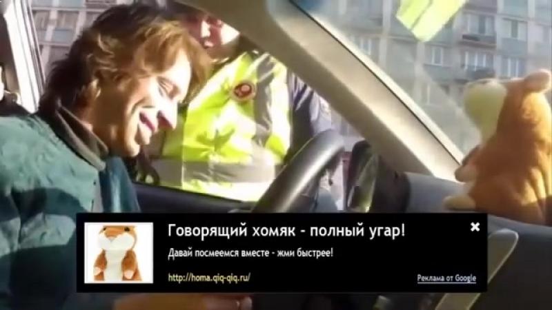 Video smeshnoe na telefon prikoly skachat besplatno (MosCatalogue.net).mp4