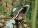 Романс черепахи Тортилы (Приключения Буратино)