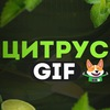 Цитрус   GIF
