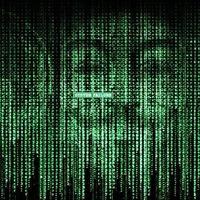 pashavoma avatar