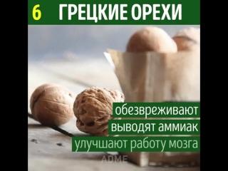 doc2088961_472339167.mp4