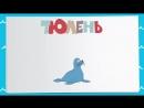 УЧИМ ЖИВОТНЫХ! Полярные животные для детей __ Развивающие мультфильмы для самых маленьких