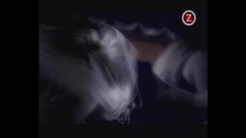 Children Of Bodom Needled 24 7