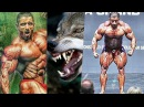 İRAN KURDU - Best of Hadi Choopan / Fitness Motivation