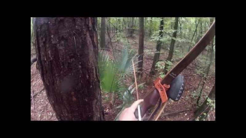 Spot and stalk wild hogs with a longbow on public
