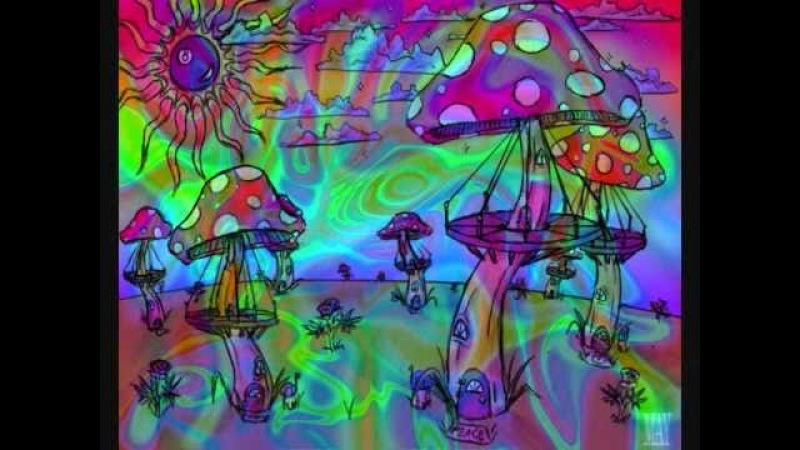 Musica electronica psychedelic 2011
