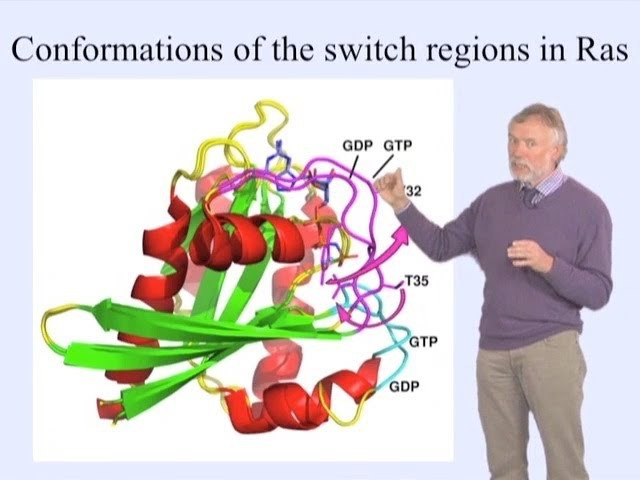 Alfred Wittinghofer (MPI) Part 1 GTP-binding Proteins as Molecular Switches
