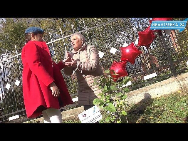 В Ивантеевке появилась скромная аллея памяти героев ВОВ
