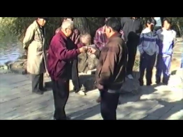 Shi Ming - Stillness: The Mover Shaker in Taijiquan